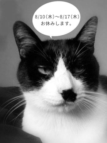 170808_2_kaki_kyugyou.jpg